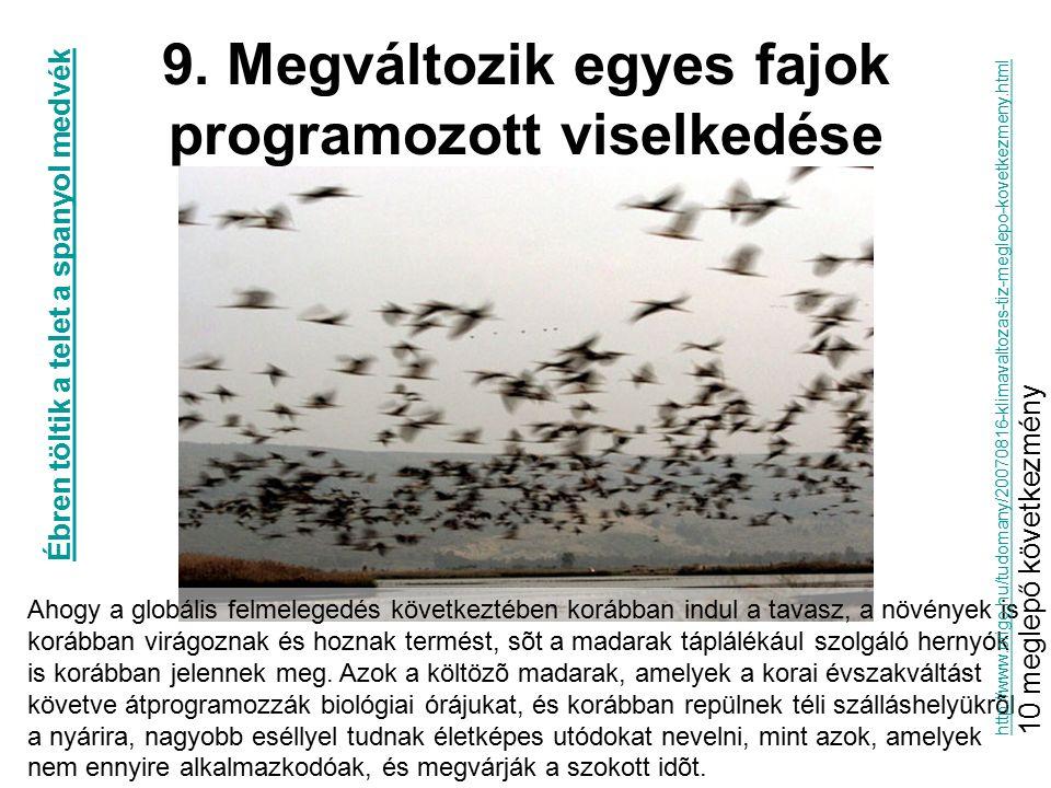 9. Megváltozik egyes fajok programozott viselkedése