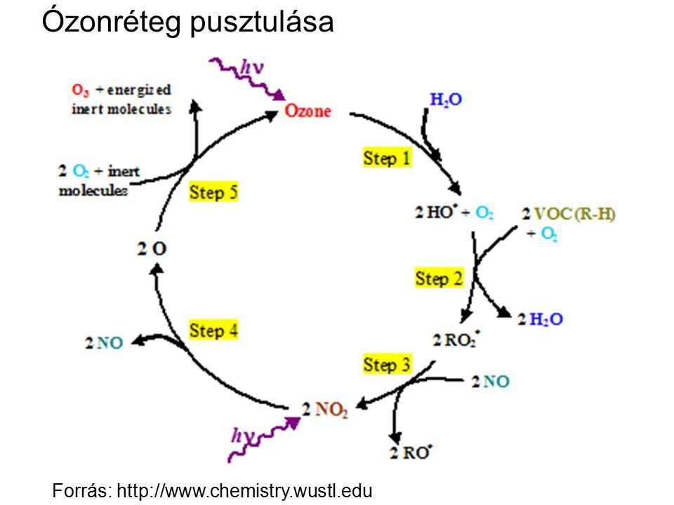 Ózonréteg pusztulása Forrás: http://www.chemistry.wustl.edu