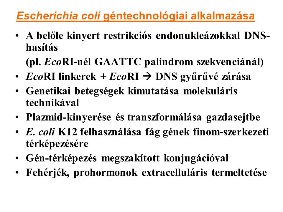Escherichia coli géntechnológiai alkalmazása