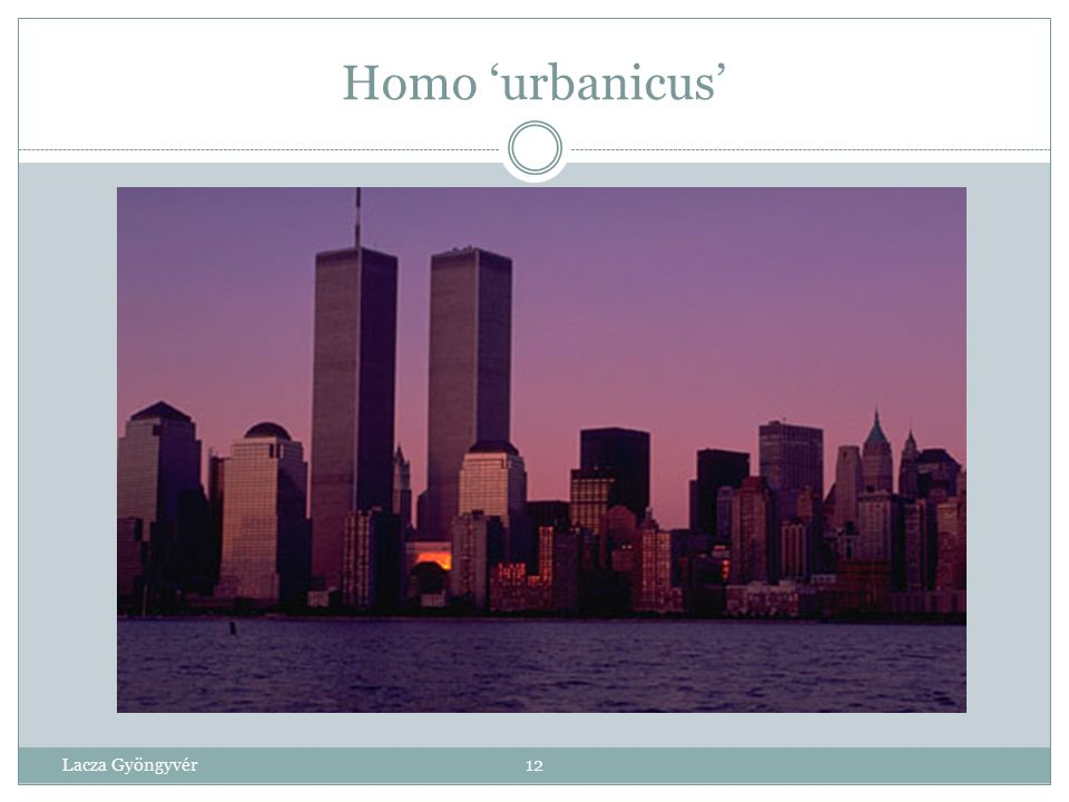 Homo 'urbanicus' Lacza Gyöngyvér 12 12