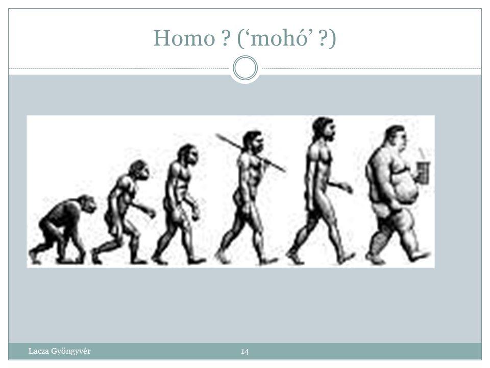 Homo ('mohó' ) Lacza Gyöngyvér 14 14