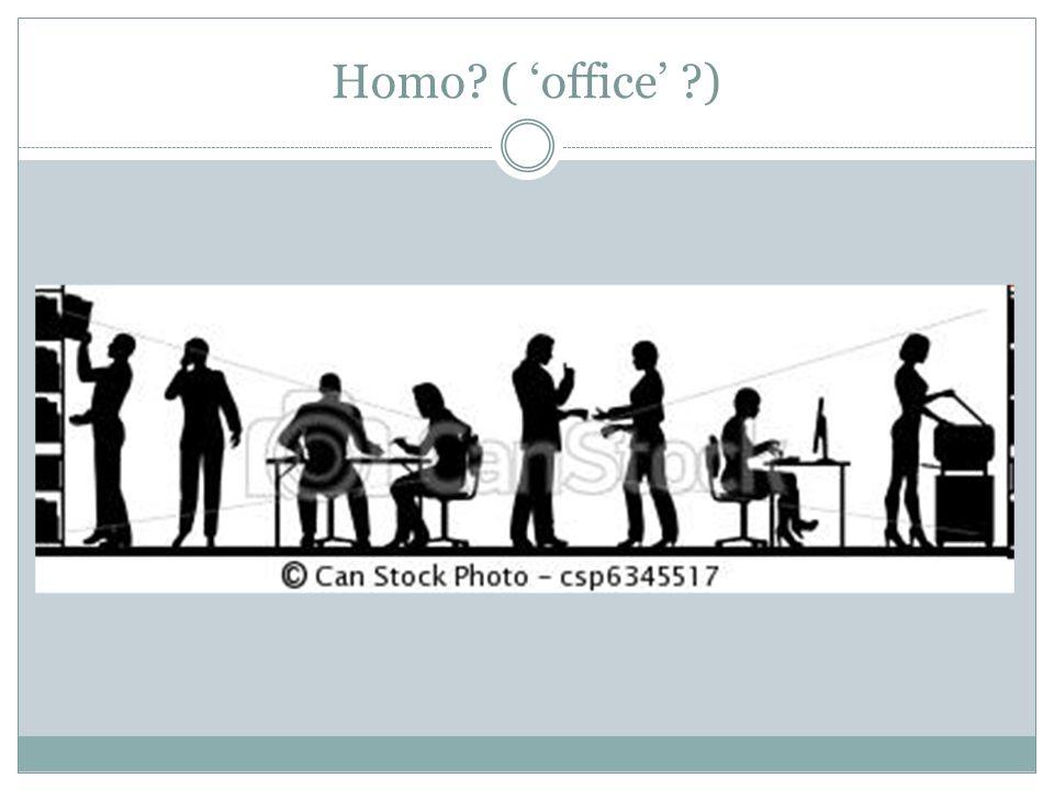Homo ( 'office' )