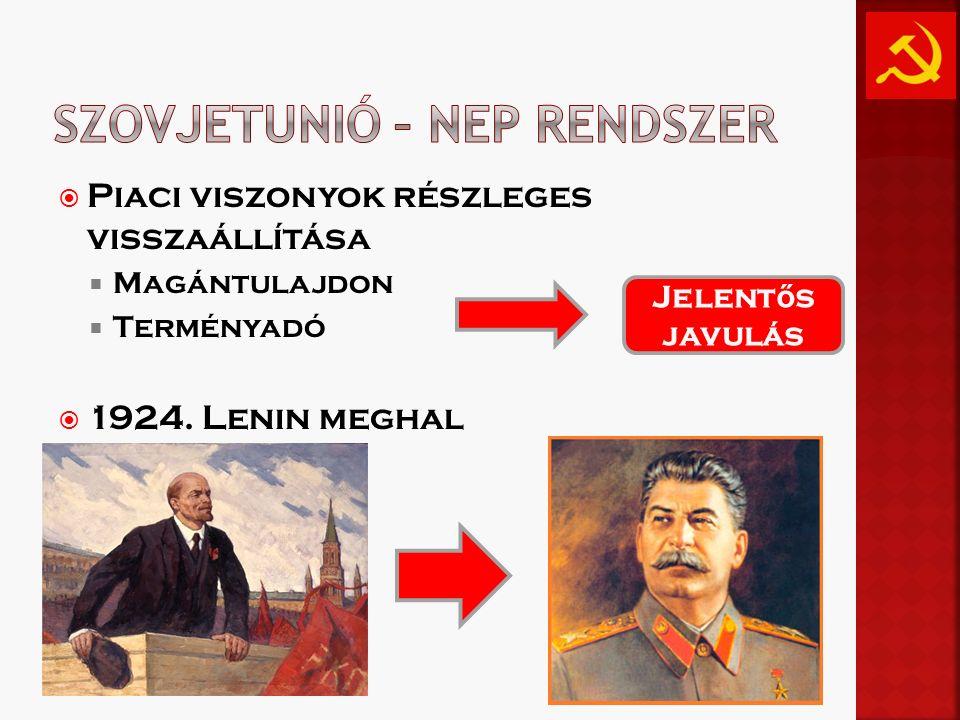 Szovjetunió – NEP rendszer