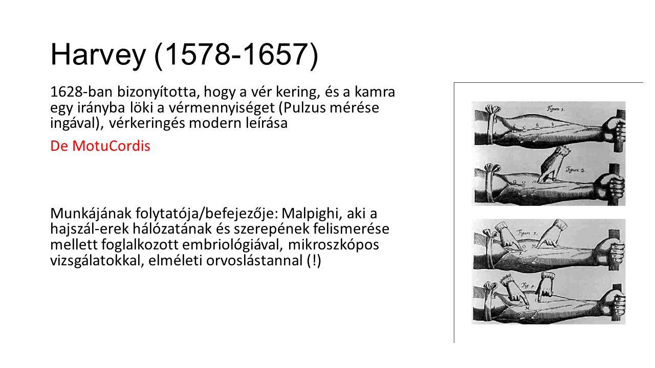 Harvey (1578-1657)