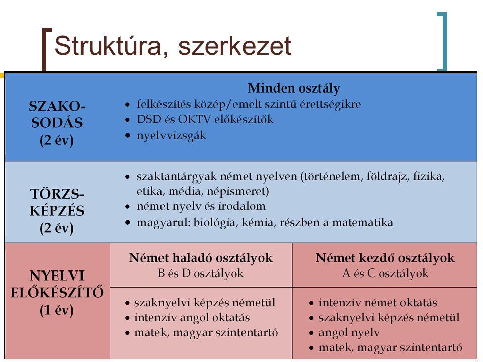 Struktúra, szerkezet ~ 300 diák, ~40 tanár