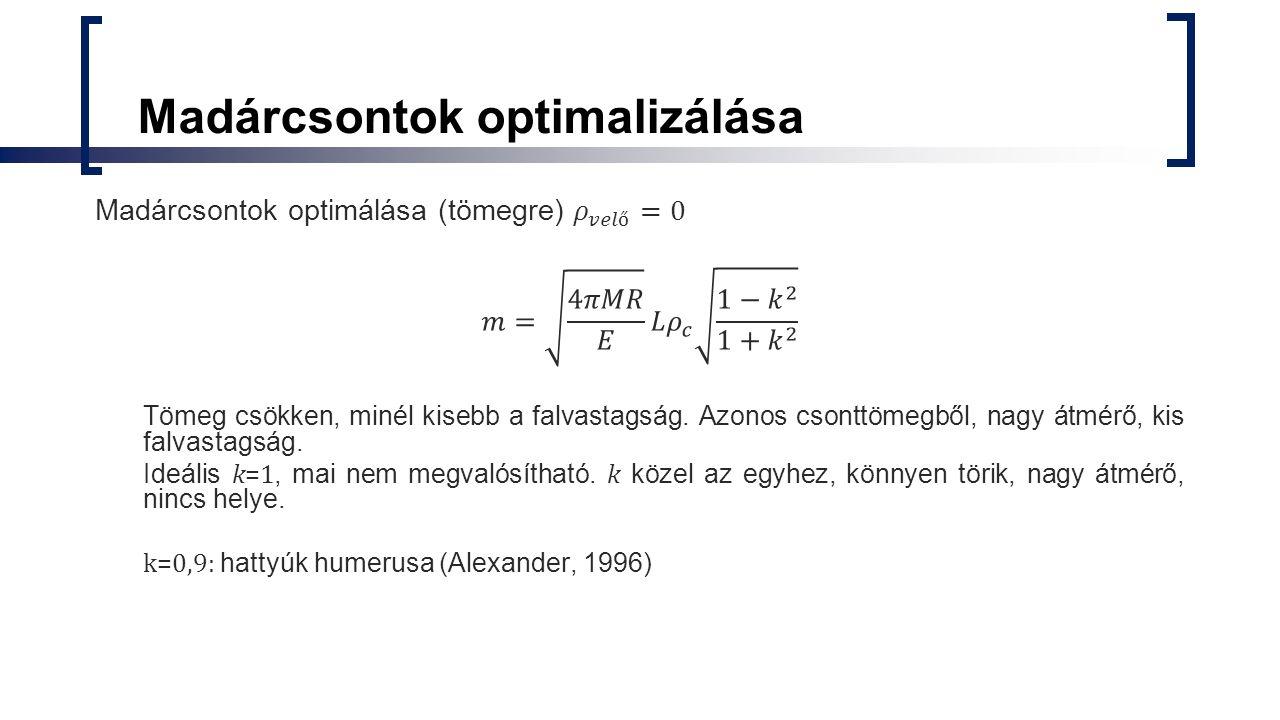 Madárcsontok optimalizálása