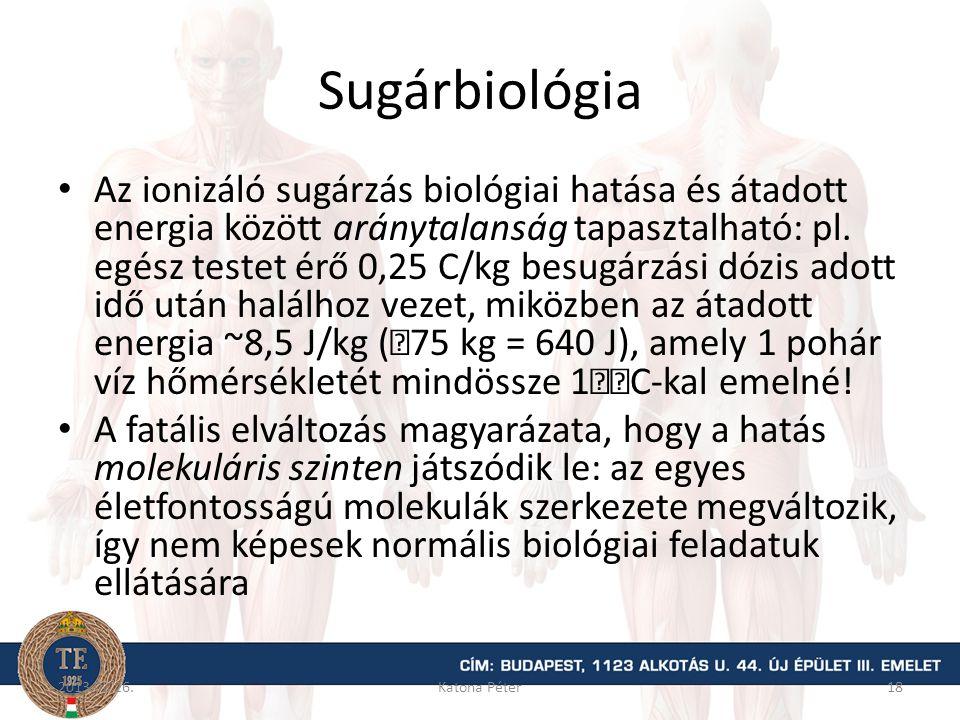 Sugárbiológia