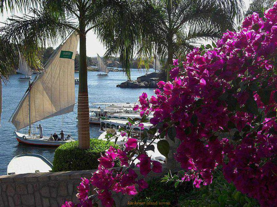 kitchener island aswan