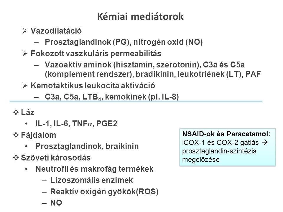 Kémiai mediátorok Vazodilatáció