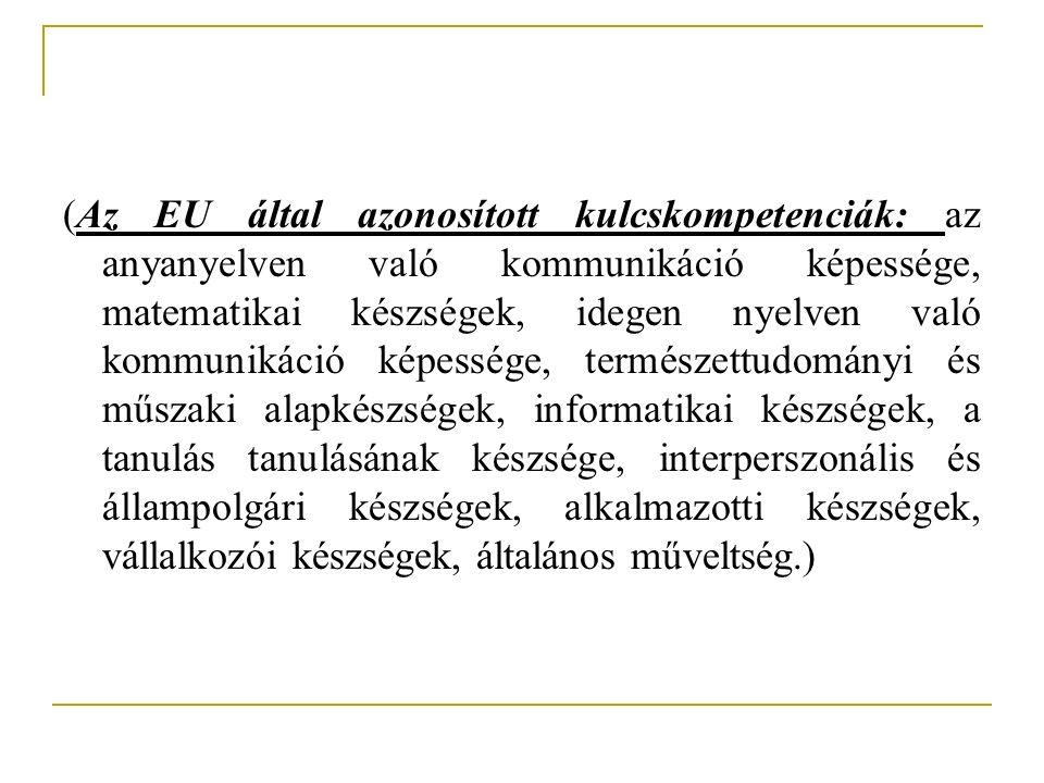 (Az EU által azonosított kulcskompetenciák: az anyanyelven való kommunikáció képessége, matematikai készségek, idegen nyelven való kommunikáció képessége, természettudományi és műszaki alapkészségek, informatikai készségek, a tanulás tanulásának készsége, interperszonális és állampolgári készségek, alkalmazotti készségek, vállalkozói készségek, általános műveltség.)