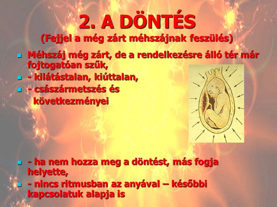 2. A DÖNTÉS (Fejjel a még zárt méhszájnak feszülés)