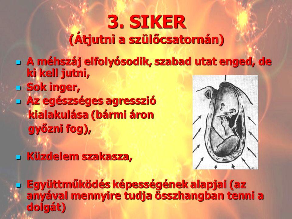 3. SIKER (Átjutni a szülőcsatornán)