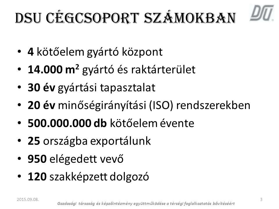 DSU cégcsoport számokban