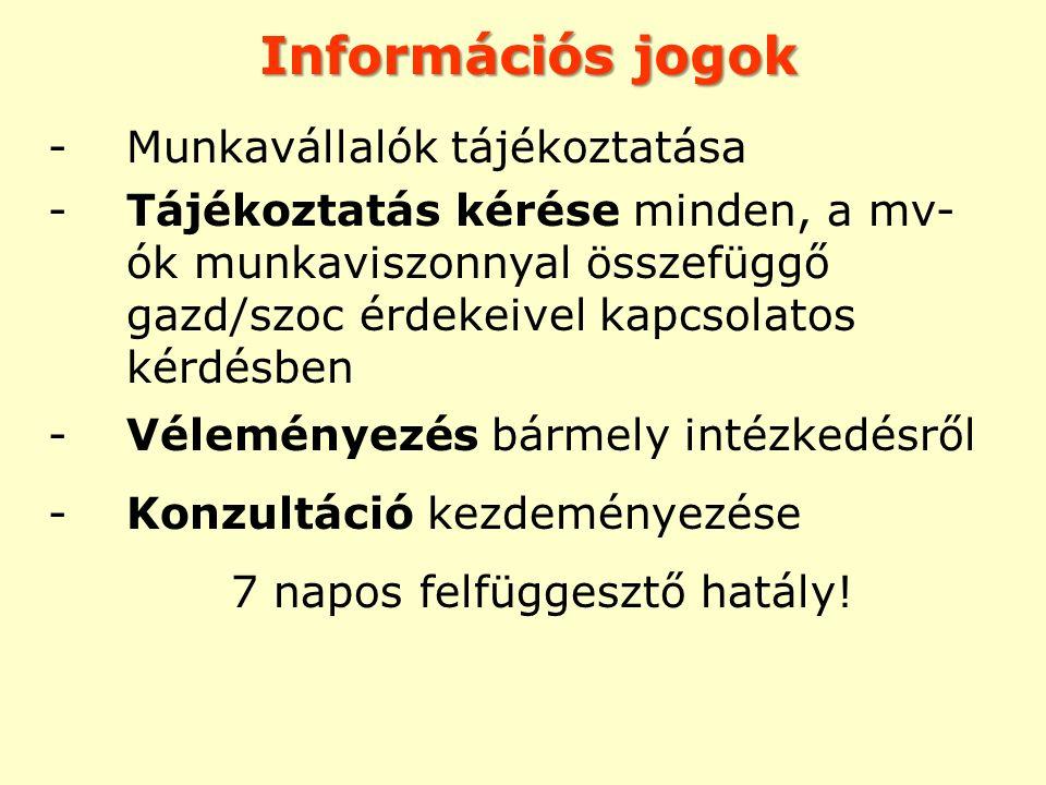Információs jogok Munkavállalók tájékoztatása