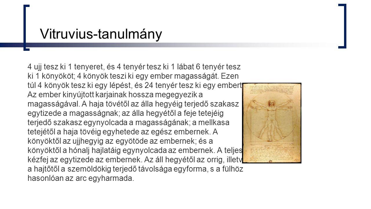 Vitruvius-tanulmány