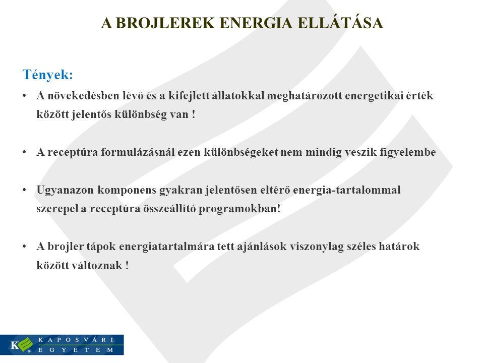 A BROJLEREK ENERGIA ELLÁTÁSA