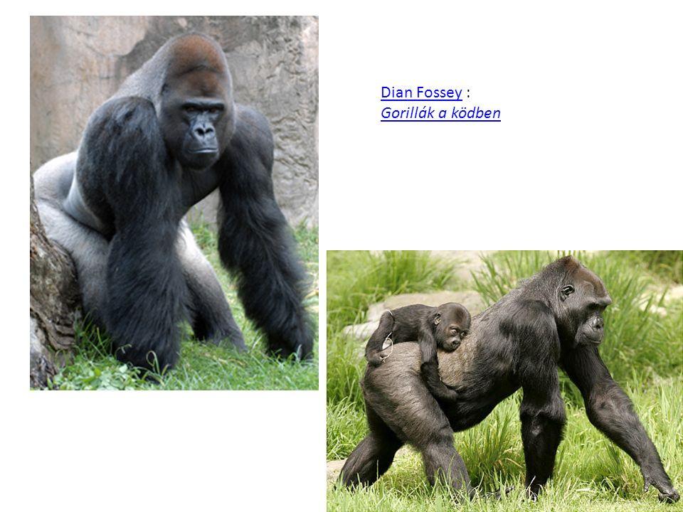 Dian Fossey : Gorillák a ködben