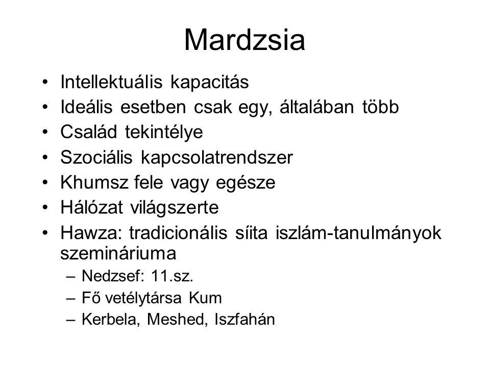 Mardzsia Intellektuális kapacitás