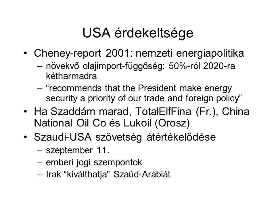 USA érdekeltsége Cheney-report 2001: nemzeti energiapolitika