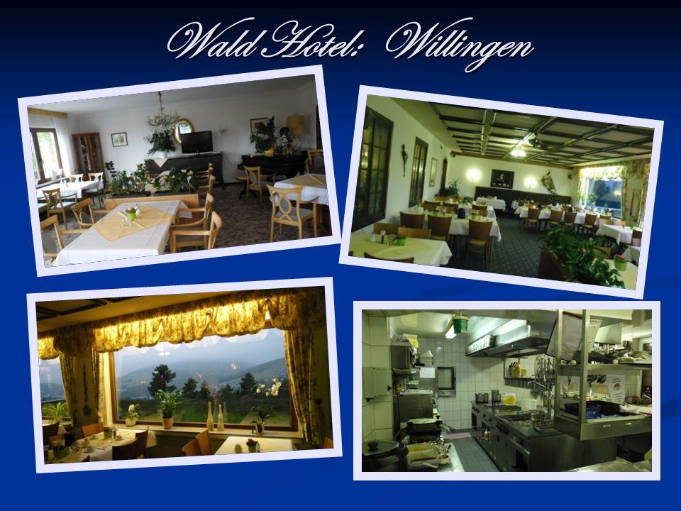 Wald Hotel: Willingen