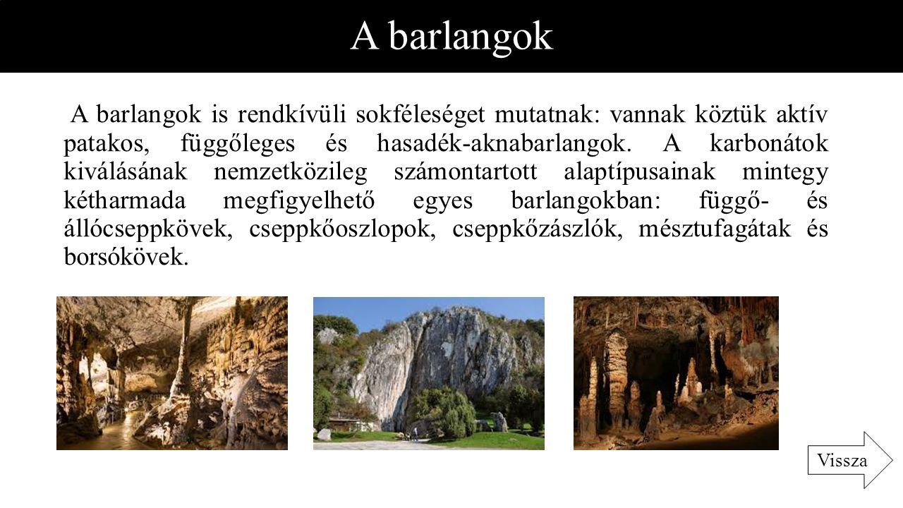 A barlangok