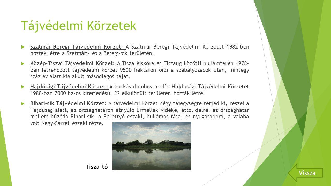 Tájvédelmi Körzetek Tisza-tó Vissza