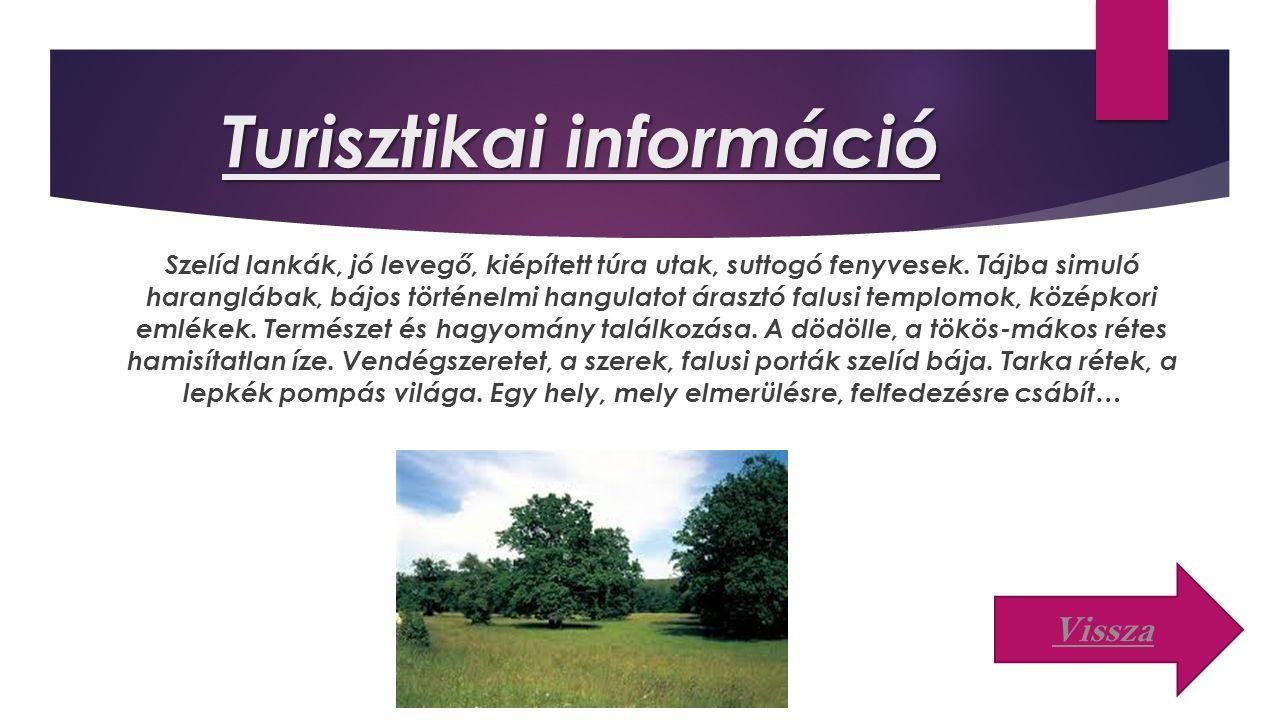 Turisztikai információ