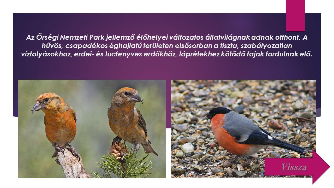 Az Őrségi Nemzeti Park jellemző élőhelyei változatos állatvilágnak adnak otthont. A hűvös, csapadékos éghajlatú területen elsősorban a tiszta, szabályozatlan vízfolyásokhoz, erdei- és lucfenyves erdőkhöz, láprétekhez kötődő fajok fordulnak elő.