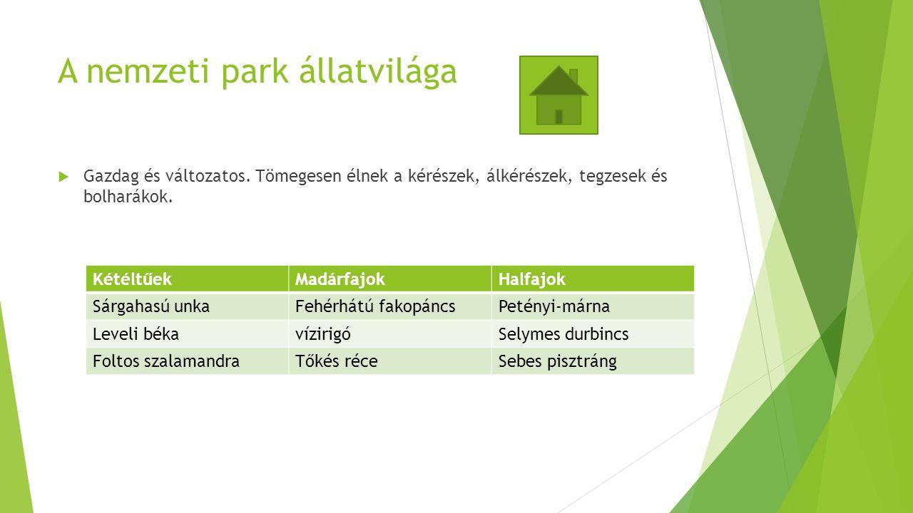 A nemzeti park állatvilága