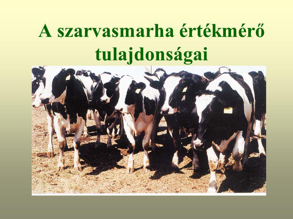 Szarvasmarha-papillomatosis átvitel, A szarvasmarhák papillomatózisa