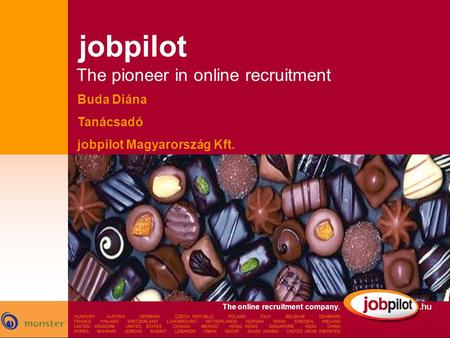 jobpilot The pioneer in online recruitment Buda Diána Tanácsadó