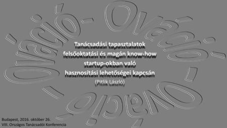 opció a startupokban)