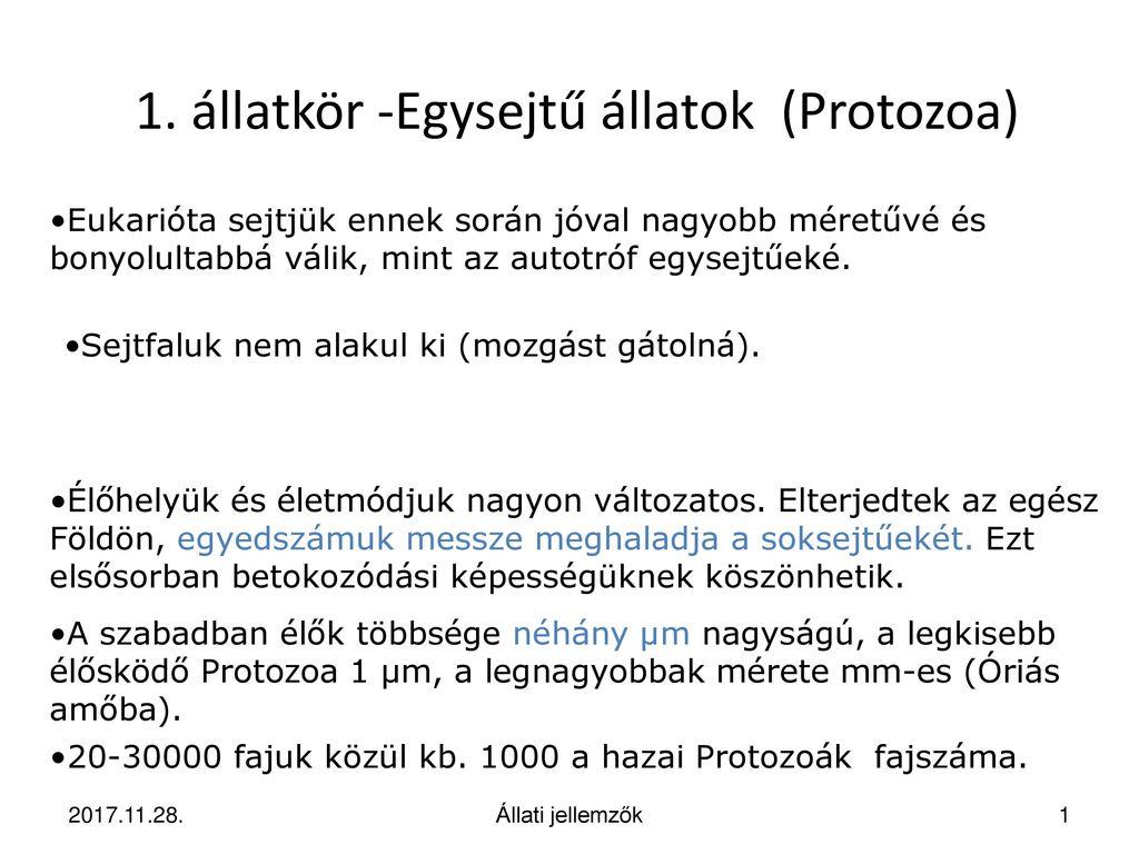egysejtű paraziták protozoák