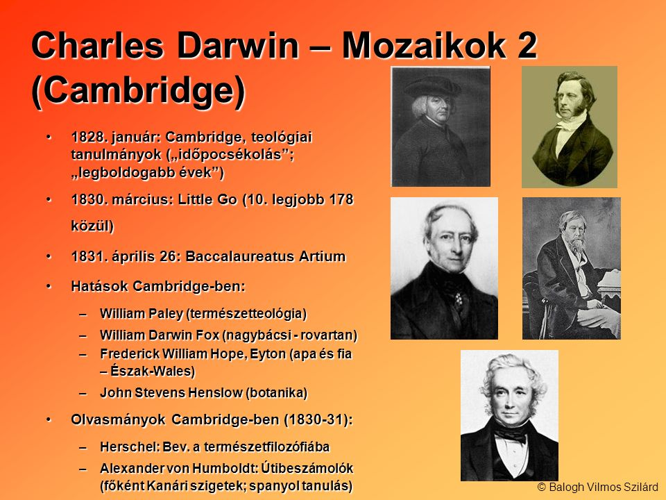 Charles Darwin – Mozaikok 2 (Cambridge)