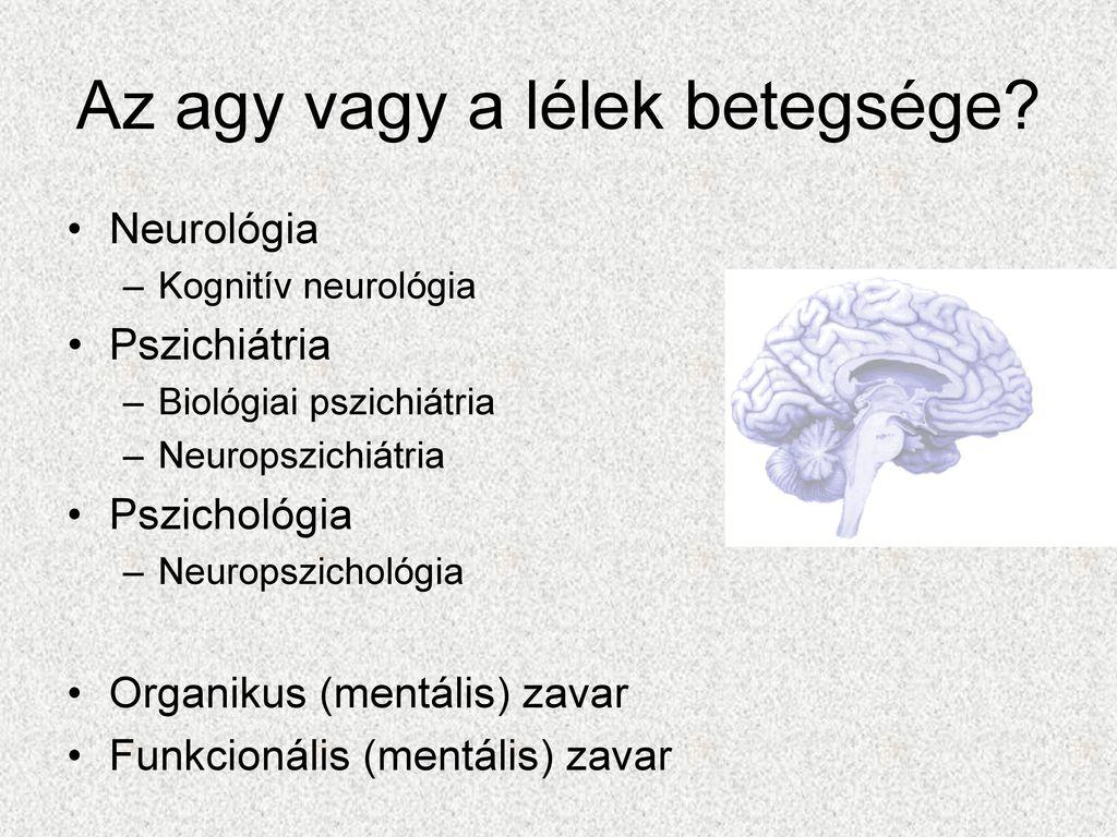 Agyi anatómia jelentősége a pszichiátriában - ppt letölteni 5aec1acec9