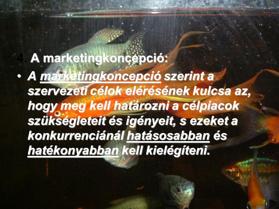 4. A marketingkoncepció: