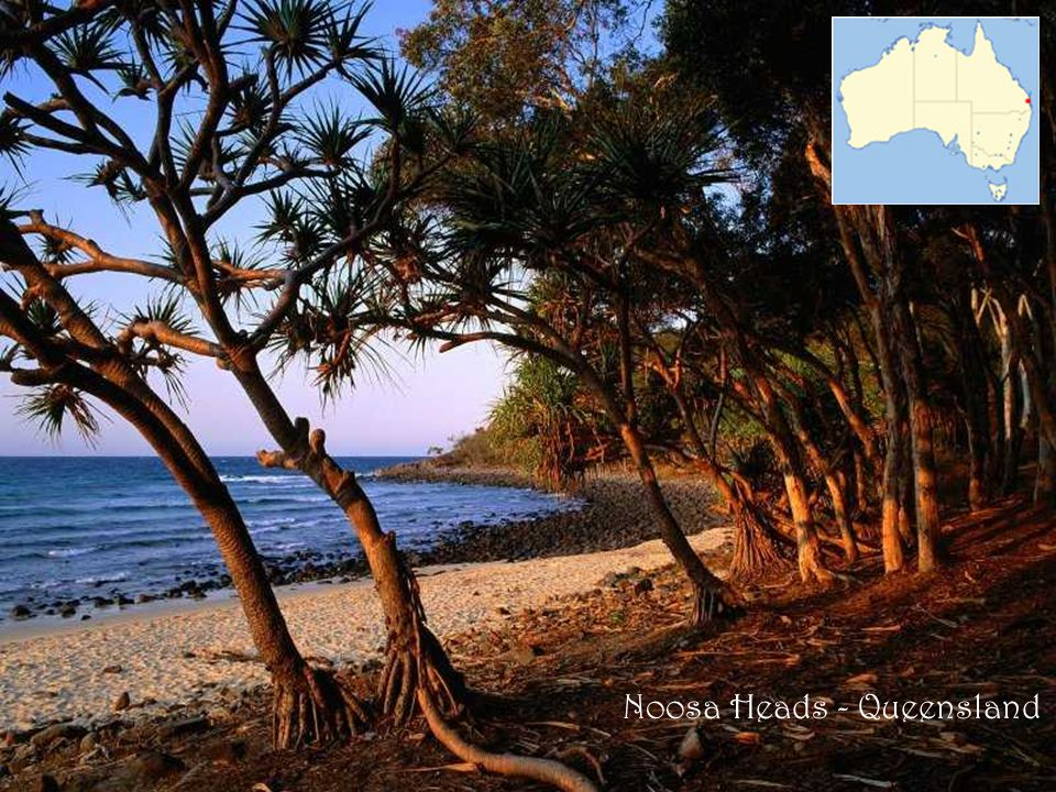 Noosa Heads - Queensland
