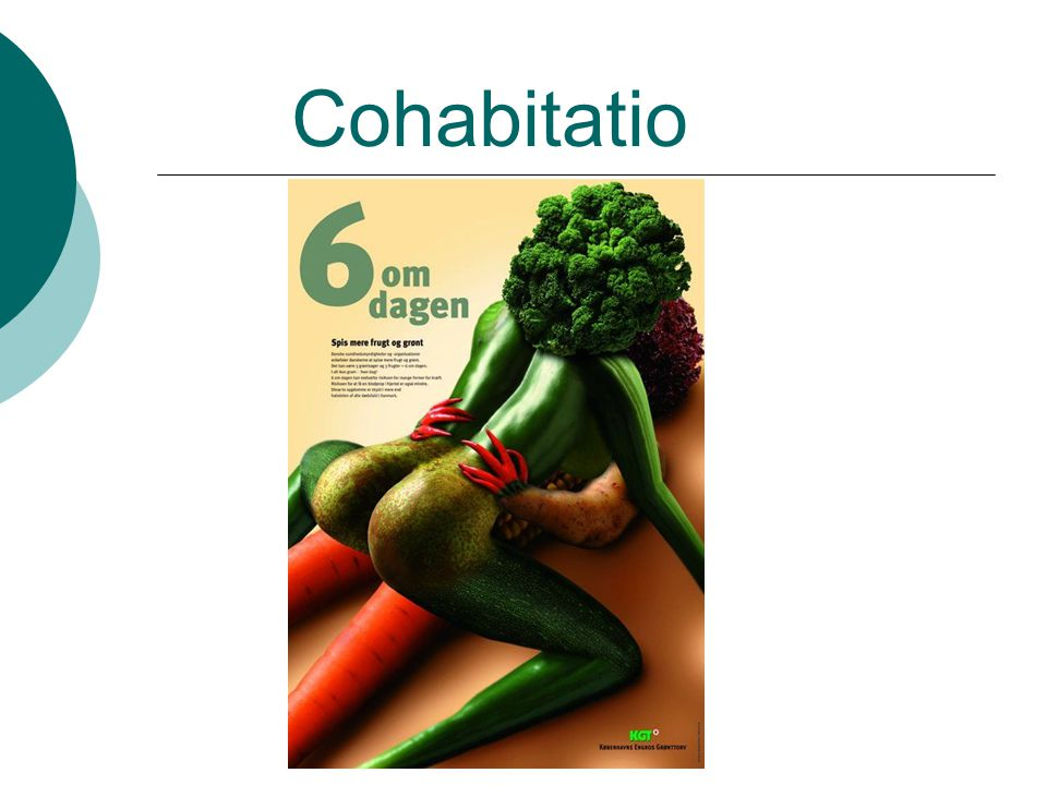 Cohabitatio