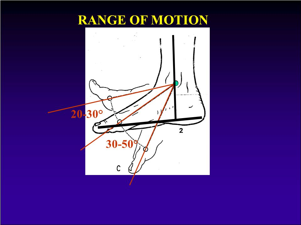 RANGE OF MOTION 20-30° 30-50°