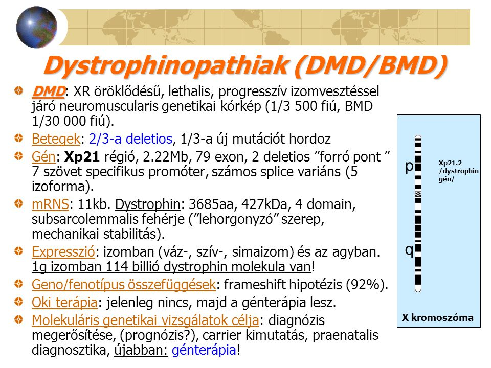 Dystrophinopathiak (DMD/BMD)
