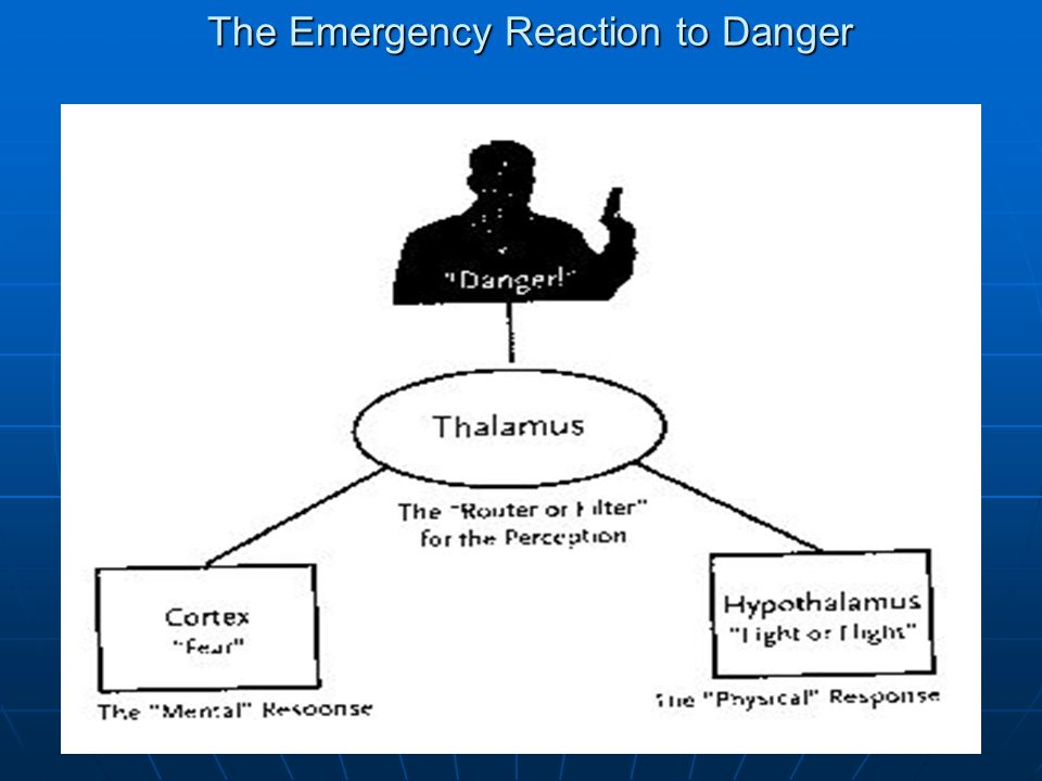 The Emergency Reaction to Danger