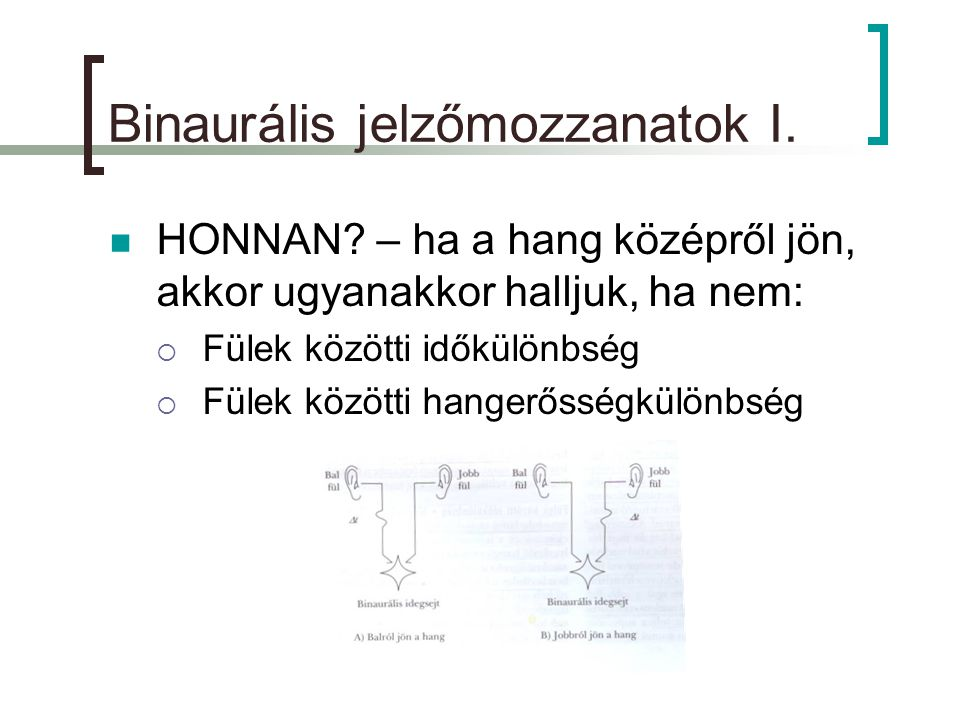 binaurális látás a látás helyreállítása 0 5