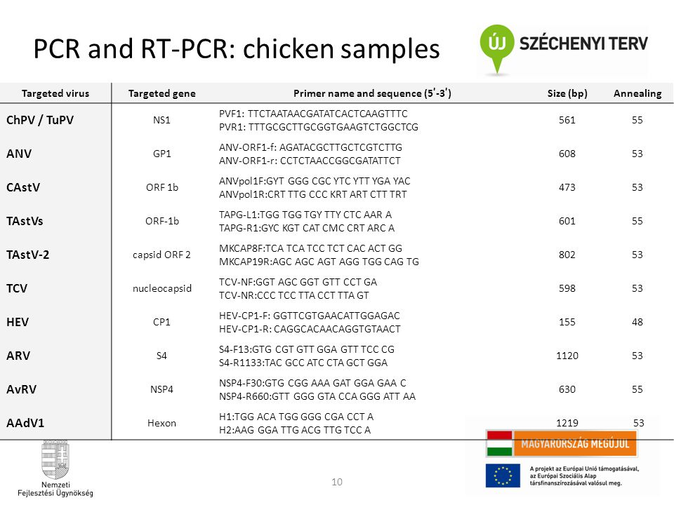 PCR and RT-PCR: chicken samples