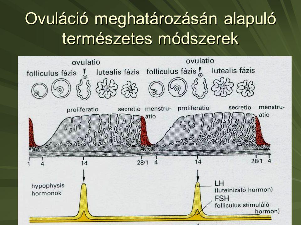 Erekció nincs ovuláció. Potencia-problémák a fogantatás útjában: okok és tennivalók