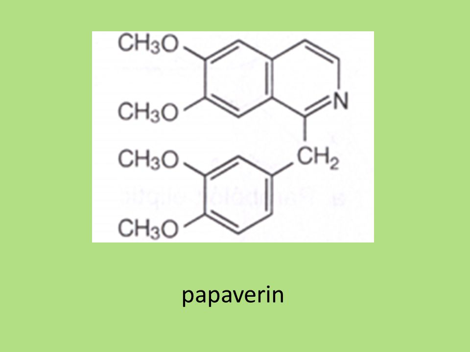papaverin