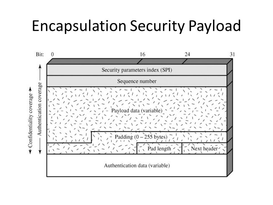 Encapsulation Security Payload