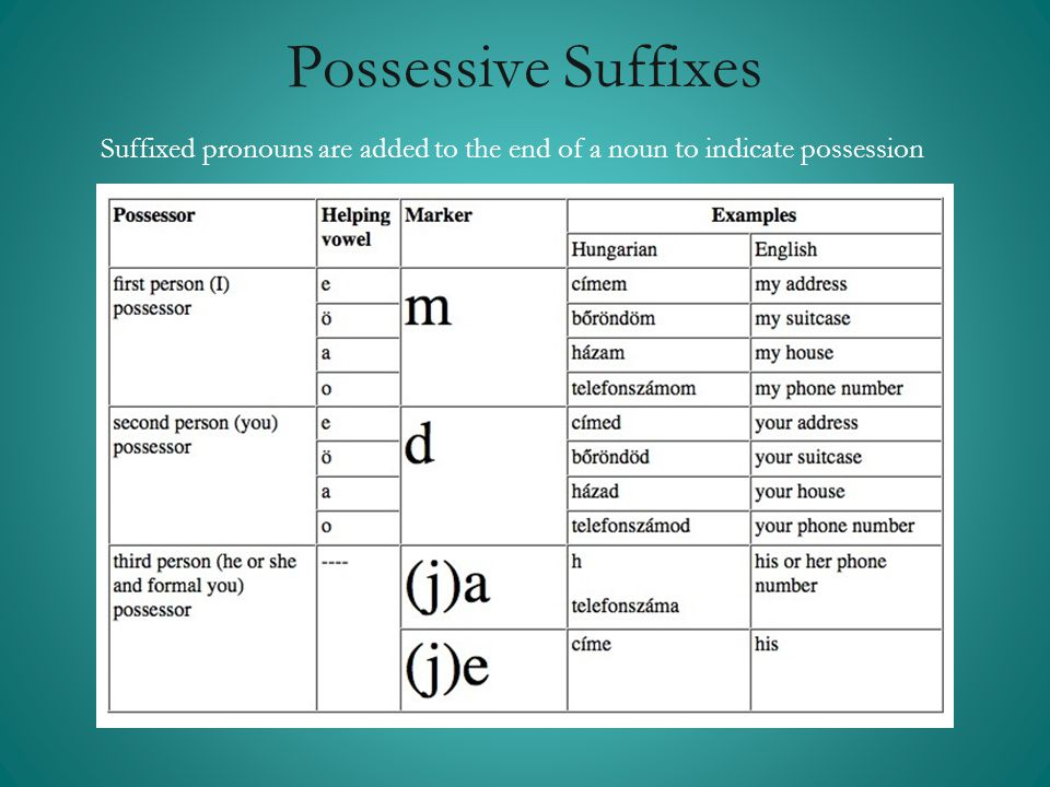 Possessive Suffixes Suffixed pronouns are added to the end of a noun to indicate possession.