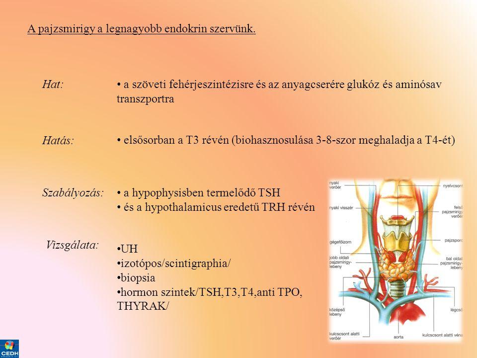 fogyás homeopátia révén