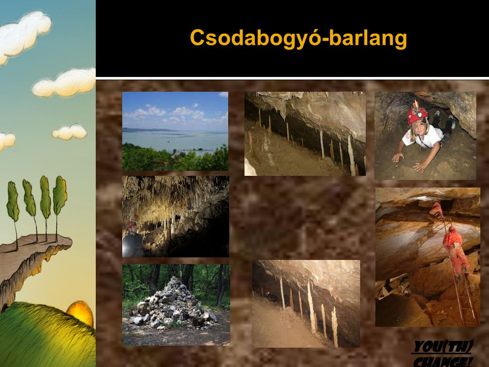 Csodabogyó-barlang You(th) Change!