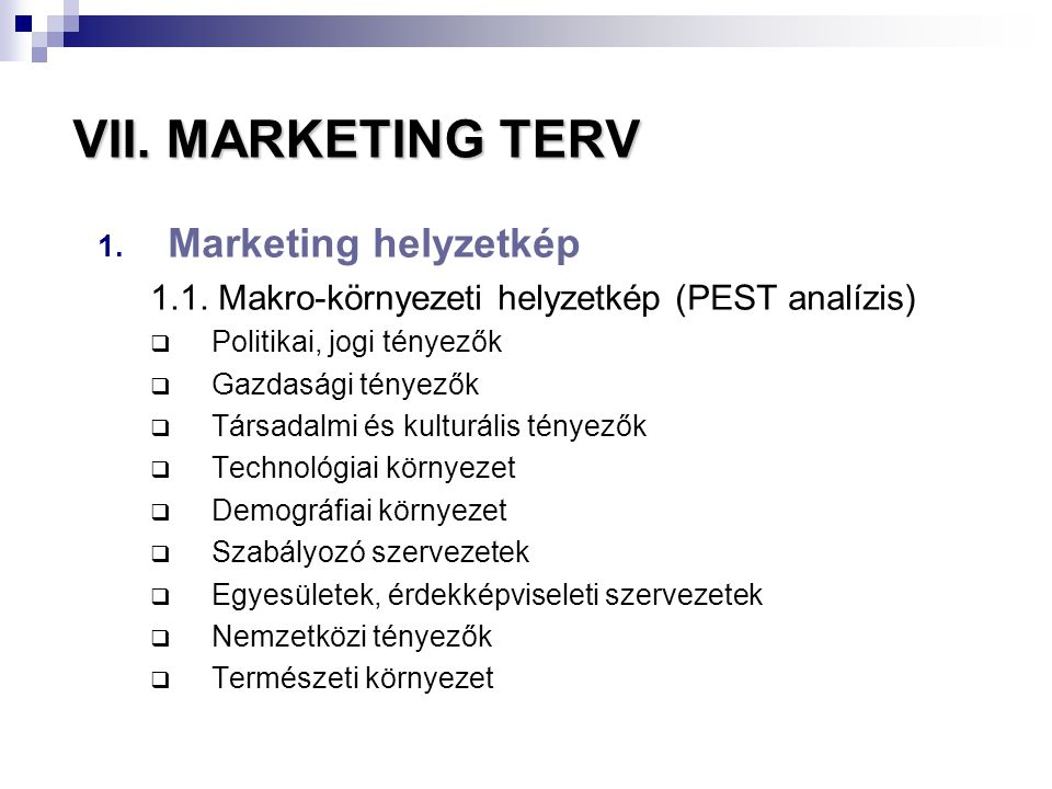 VII. MARKETING TERV Marketing helyzetkép